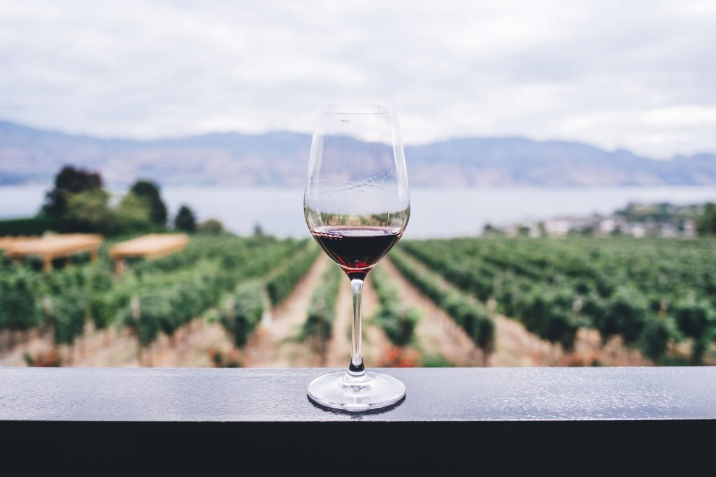 Wine Glass with Red Wine and vineyard in backgound