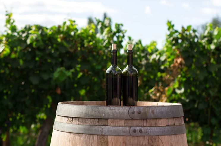 vacations for wine lovers