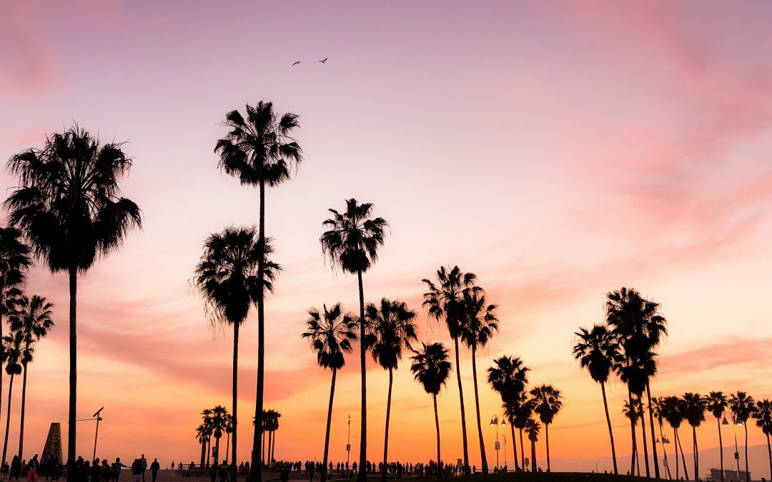 Things To Do While on a Southern California Road Trip