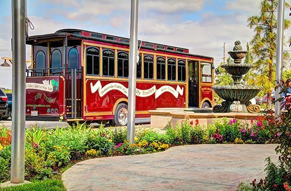 Go on a wine tour for something to do in Temecula Valley