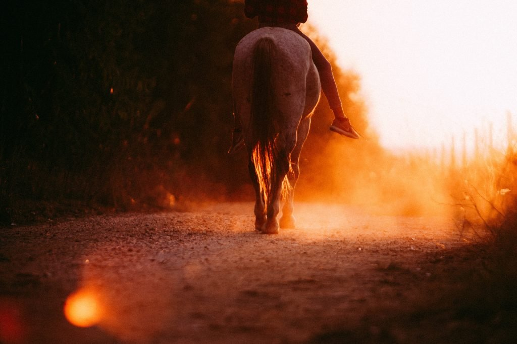 Horseback Riding at Green Acres Ranch near the Temecula Valley